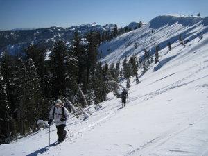 Backcountry.net Donner Peak